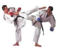 2 karate men