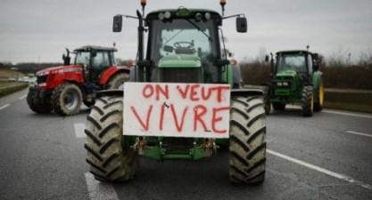 Le but des États généraux de l'alimentation recherché par Emmanuel Macron était-il de mieux rémunérer le travail des paysans ? Photo : Jean-Sébastien Àvard/AFP