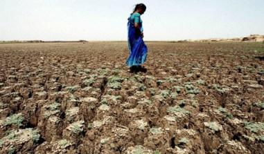 Nous consommons annuellement 1,7 fois ce que la planète peut reconstituer en un an comme ressources renouvelable. Photo : Indranil Mukherje/AFP