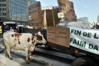Le prix du lait payer aux producteurs ne fait que baisser d'année en année. Ici, manifestation à Bruxelles en 2009. Photo : Alain Gobet/AFP