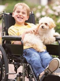 handicap arielSkelley