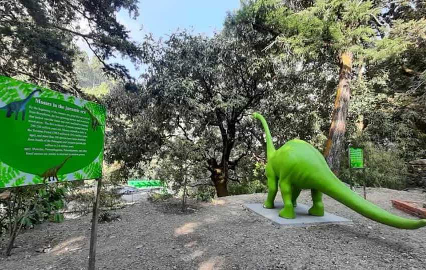 India's first moss garden in Khurpatal Nainital
