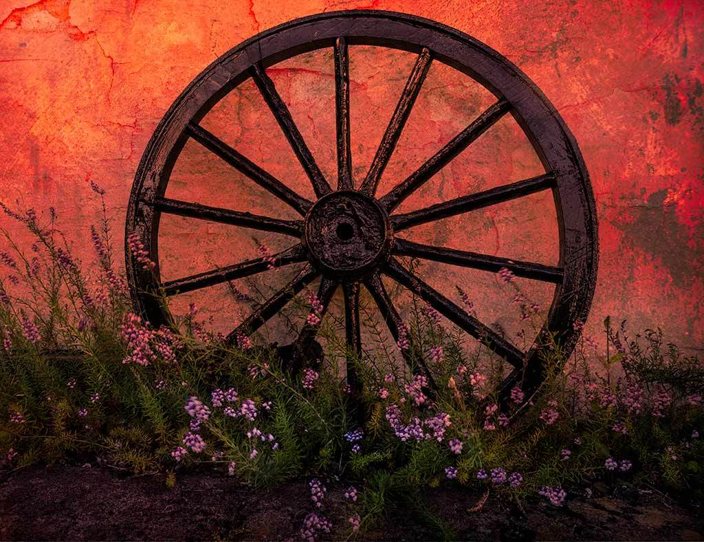 Cart Wheel and Wild Flowers