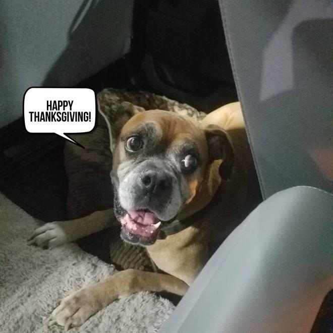 Ramsey Says Happy Thanksgiving