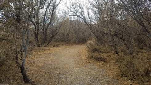 Pedestrian Meadow Trail - Hueco Tanks