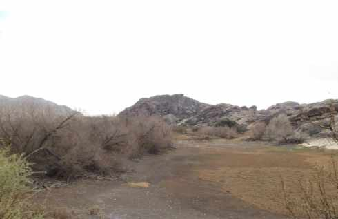 Hueco Tanks Meadow