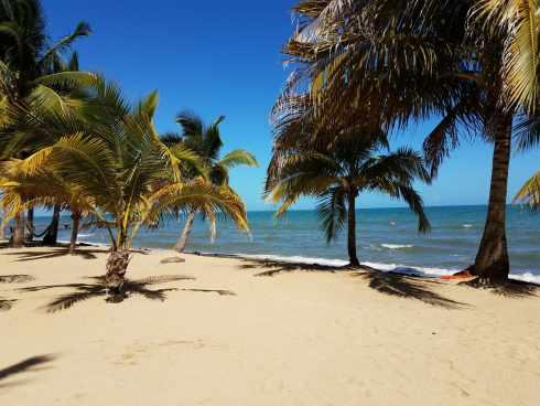 Hopkins Belize Beach