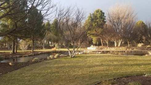 Gage Gardens pond