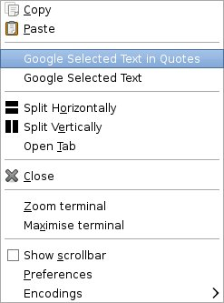 terminator-google-search