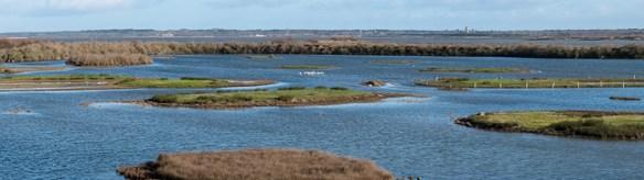 Une succession de lagunes et de marais