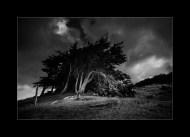 Dunes d'Hattainville