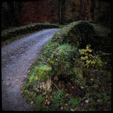 automne_02_011213
