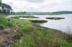 À marée basse, la rivière laisse place à des vasières.