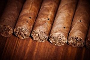 Tabakwürmer