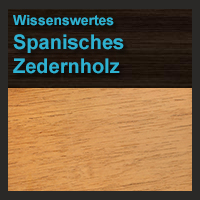 Spanisches Zedernholz