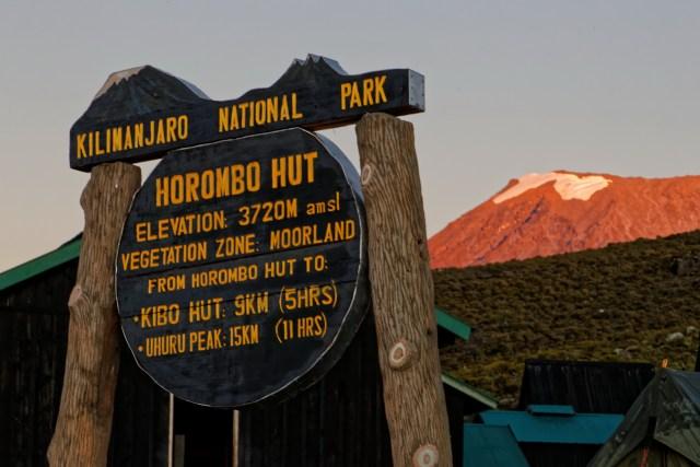 ...hoch zum Gipfel des Kilimanjaro