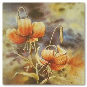 Hummingbird Gallery Les-Weisbrich-Tiger-Lily-Lilium-Columbianum-1-Image Les Weisbrich <p>Flower Series<p>Limited Editions Currently Available