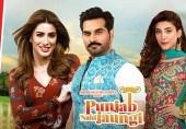 پنجاب نہیں جاؤں گی: پاکستان کی سب سے زیادہ بزنس کرنے والی فلم