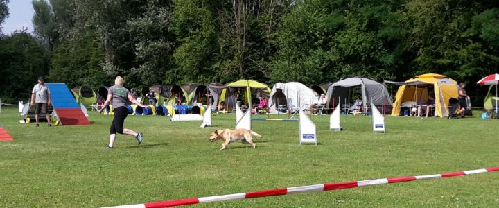 Agility OWL Cup Turnier in Lippstadt am 09.07.2017