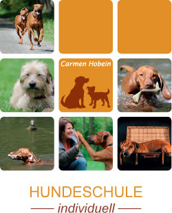 Hundeschule individuell Hannover