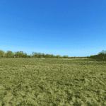 Damhusengen fritløbsområde