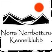Överkalix - Arctic Circle Dog Show, Nationell @ Överkalix IP, Överkalix | Norrbottens län | Sverige