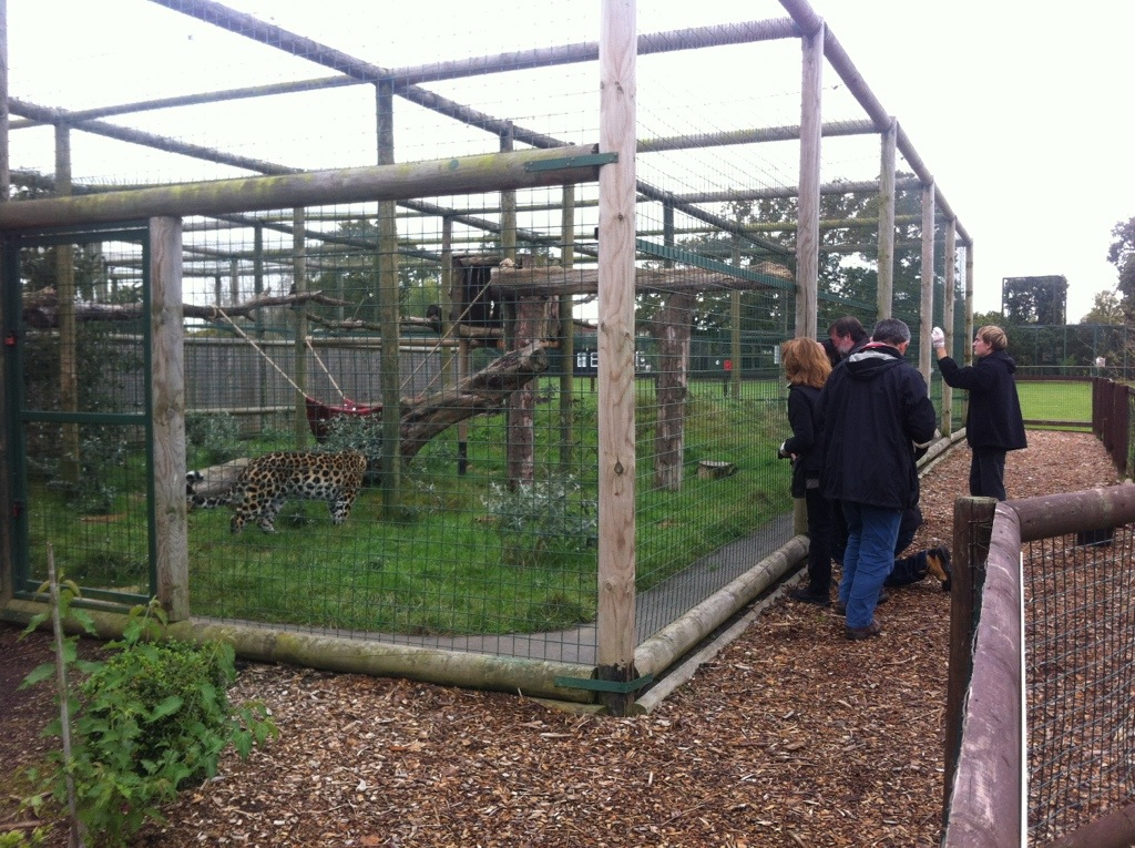 Photography groups at WHF Big Cat Sanctuary