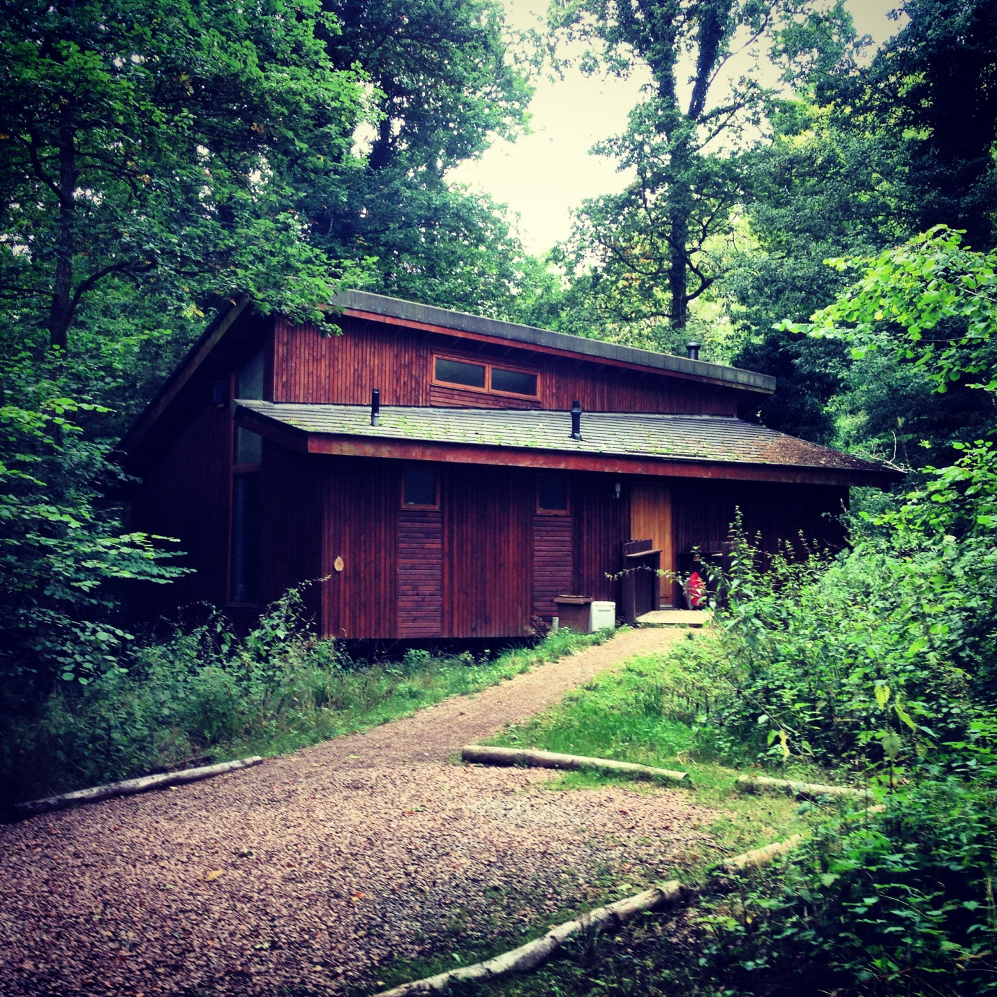 Review: Forest Holidays, The Forest of Dean