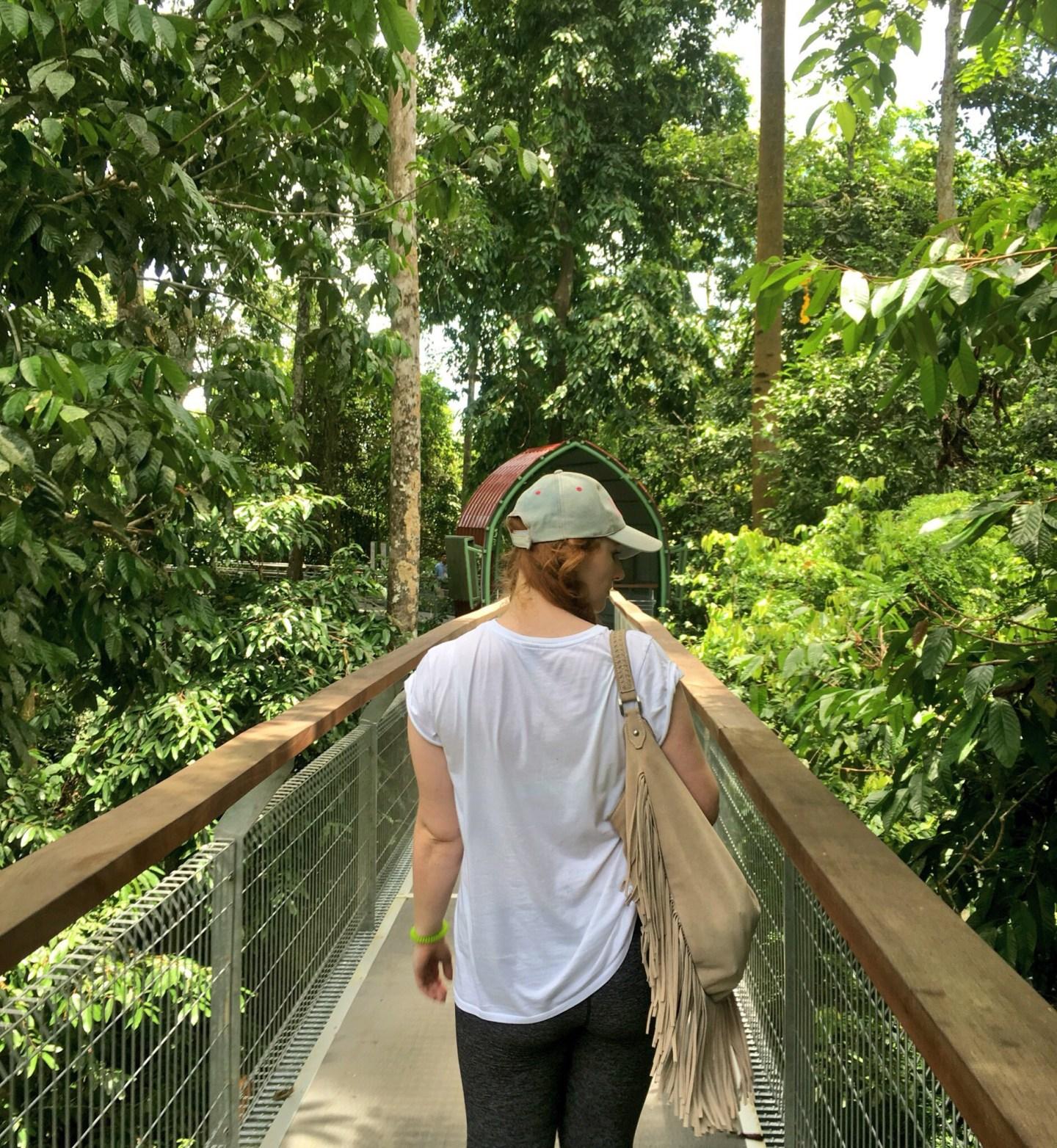 girl on jungle canopy walk