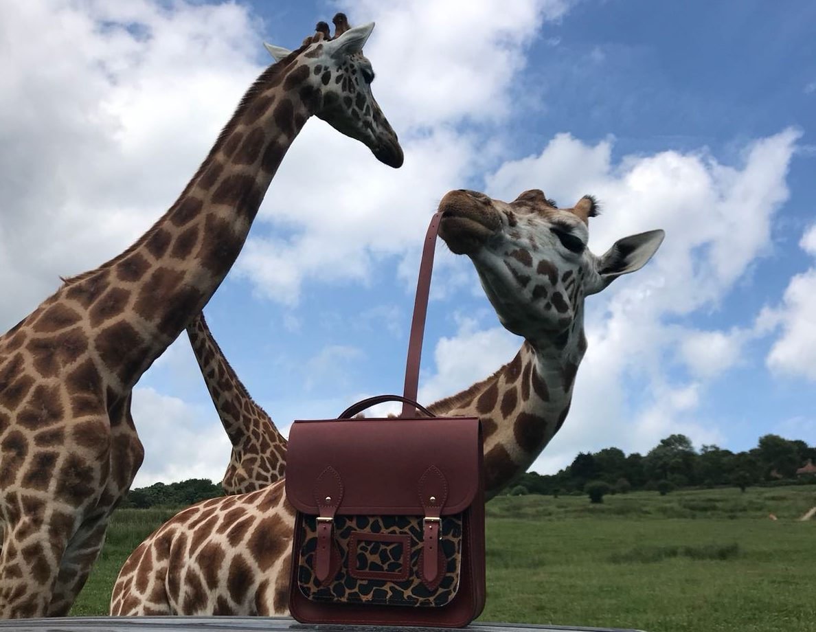 Cambridge Satchel Co Giraffe Bag