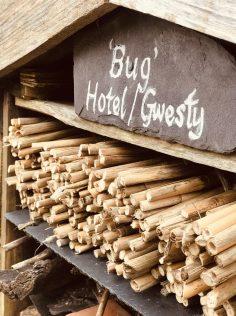 Bug Hotel at the National Botanic Garden