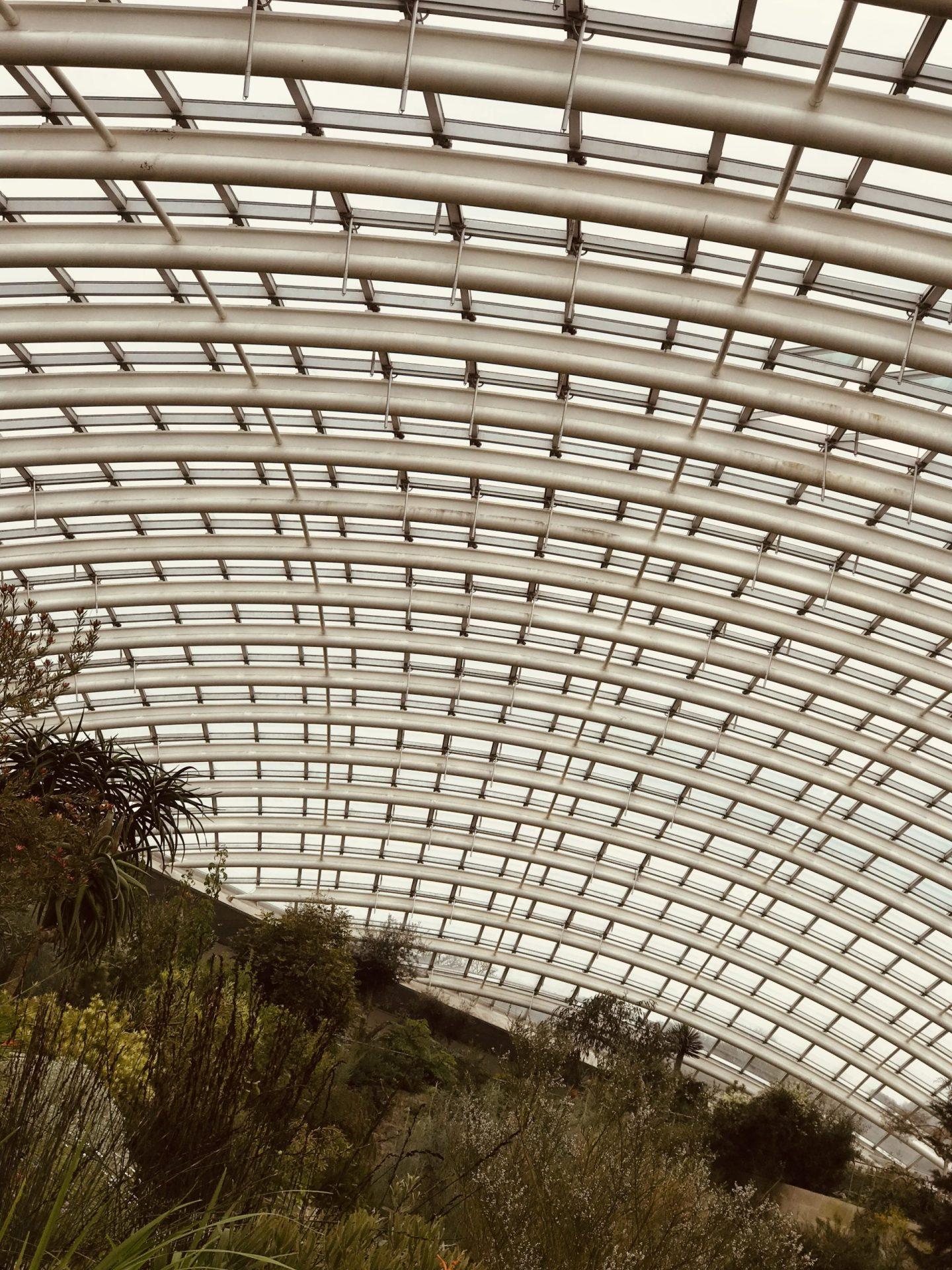 The glasshouse at  National Botanic Garden