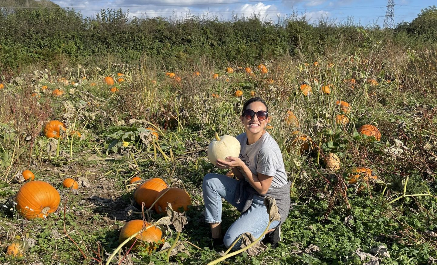 Where to Pick Your Own Pumpkins near Cardiff