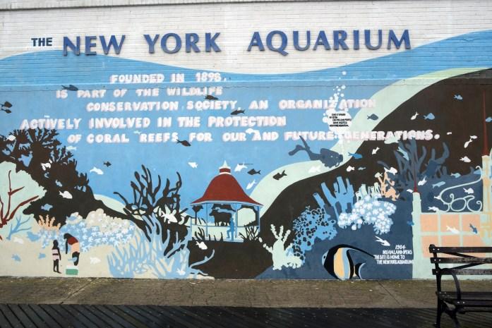 aquarium-ny2559