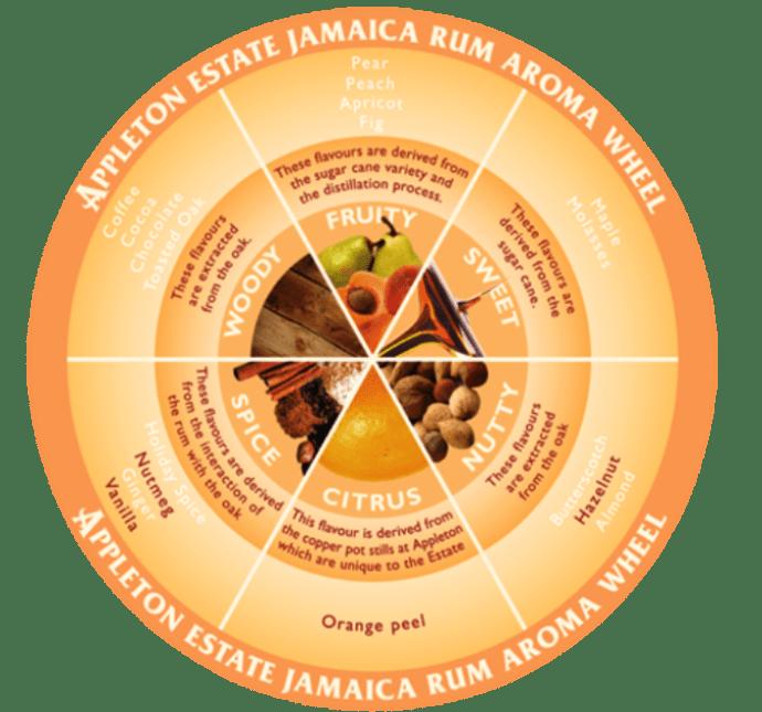 rum aroma wheel