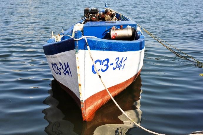 sea-14