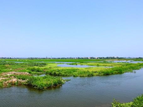 Оризищата около Хой Ан