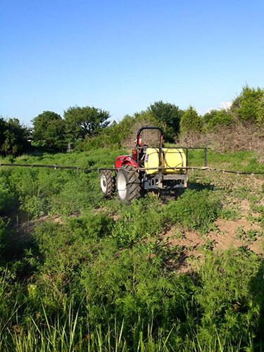 Spraying fields