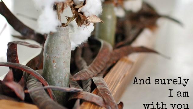 Cotton Arrangement