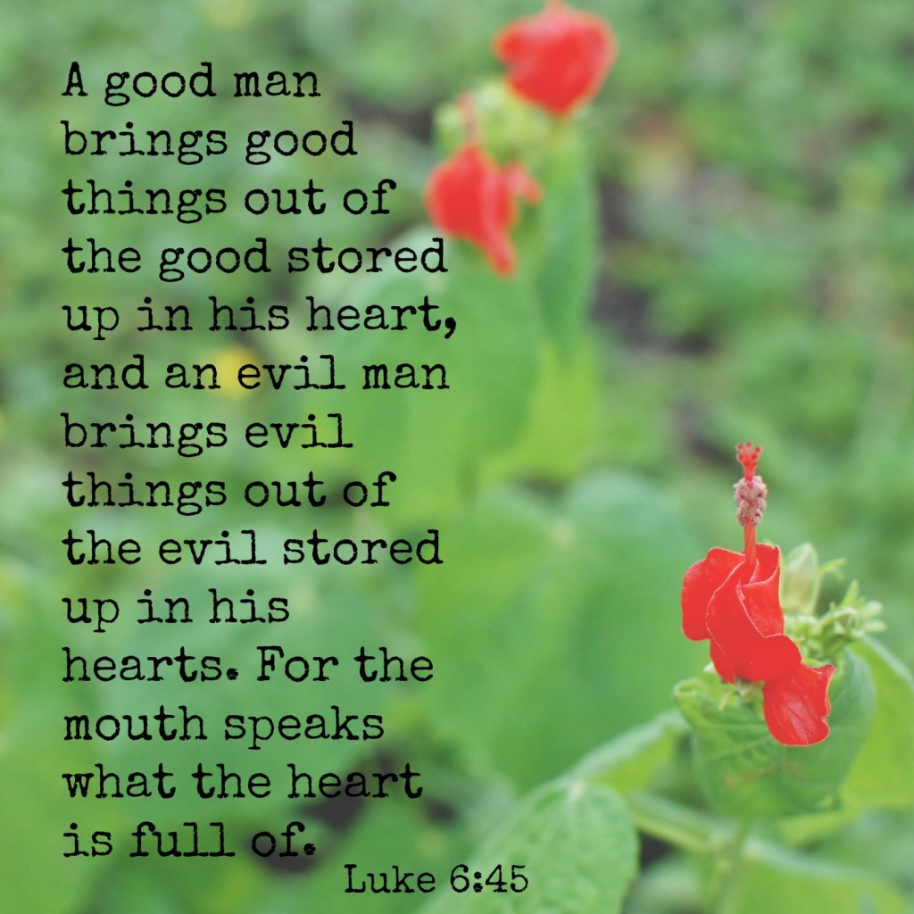 A good man brings good things out of the good stored up in his heart, and an evil man brings evil things out of the evil stored up in his heart. For the mouth speaks what the heart is full of. Luke 6:45 Memory verse challenge www.huntandhost.net