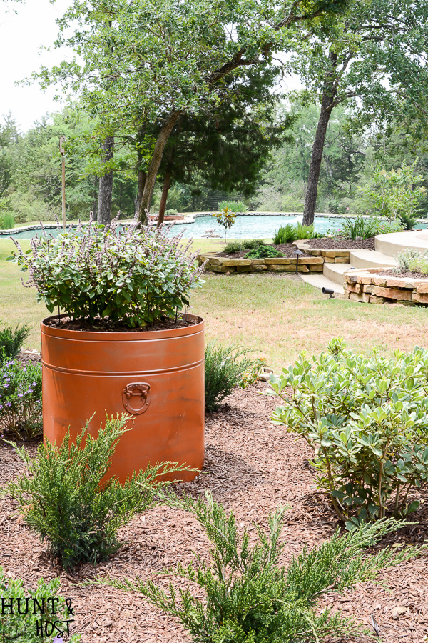 Master Gardener Home Tour: Salvaged and Upcycle Everywhere ...