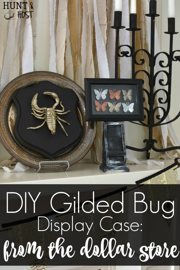 halloween decorating ideas from the dollar store these gilded bugs display cases are glamorous and - Affordable Halloween Decorations