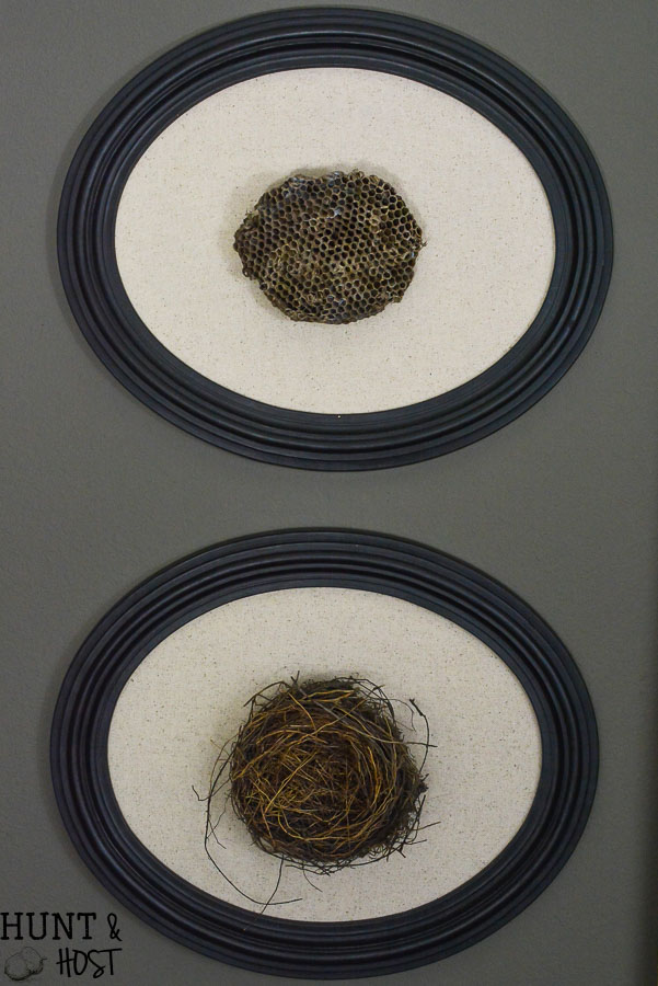 Turn a fallen nest into art and use it as inspiration to build up your family. Bird nest art and wasp nest art make gorgeous wall statement pieces.