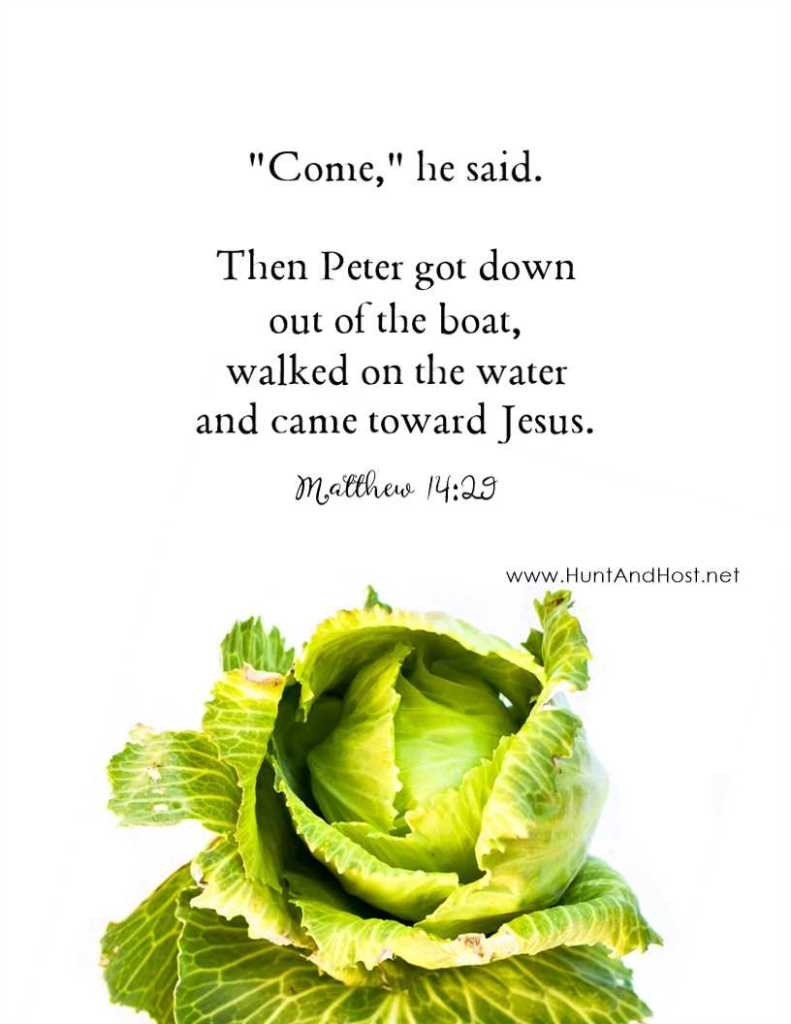 """Come,"" he said. Then Peter got down out of the boat, walked on the water and came toward Jesus. Matthew 14:29"