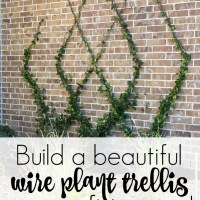 How to Build A DIY Wire Trellis on a Wall