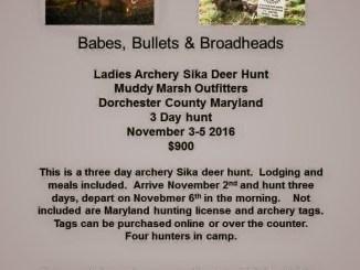 BBB Ladies Sika Deer Hunt