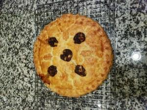 Colonial Venison Mincemeat Pie