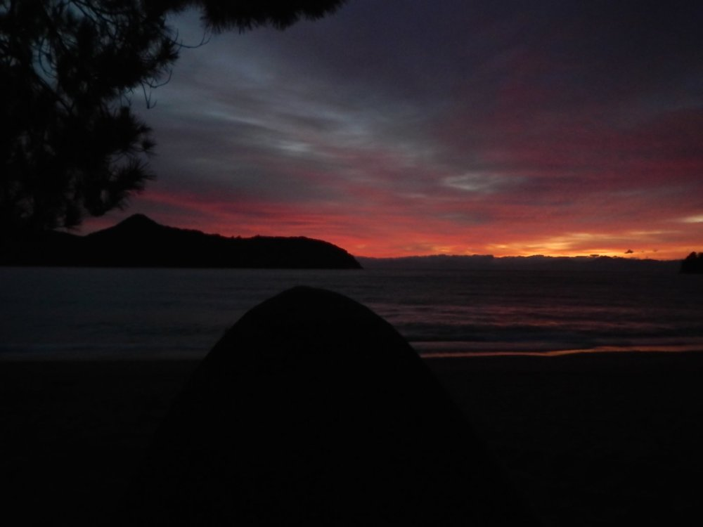Apple Tree Bay, Camping, New Zealand