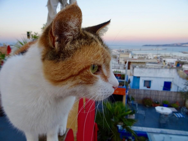 Tanger, Medina, Morocco