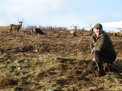 Hunting Whips fodder with David Thorne